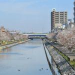 都内に6万円で住める!?江戸川区で家賃を抑えられる街をご紹介!