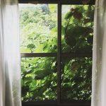 【山崎あおいの日日是好日】第2話:「ジブリみたいな家」と言えば聞こえは良いが。