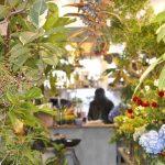まずは気軽に飾ってみて。 ― 清澄白河の花屋「LUFF」が考える花のある暮らしのはじめ方