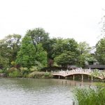 池のほとりをぶらぶら歩けば|朝がきたら、でかけよう 第2話「洗足池公園」編