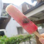 フルーツたっぷりのアイスキャンディーを持って 千駄ヶ谷で「mikaned」